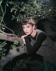 Audrey-Hepburn-sabrina-1954-12036996-1621-2064