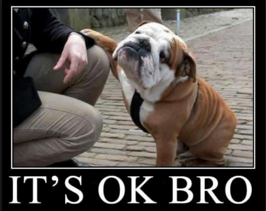 It's Okay, Bro