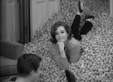 Mary Tyler Moore as Laura Petrie
